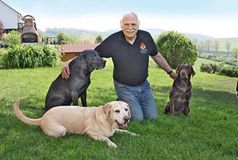 Haller mit Hunden