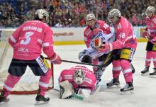 Eisbären Eishockey